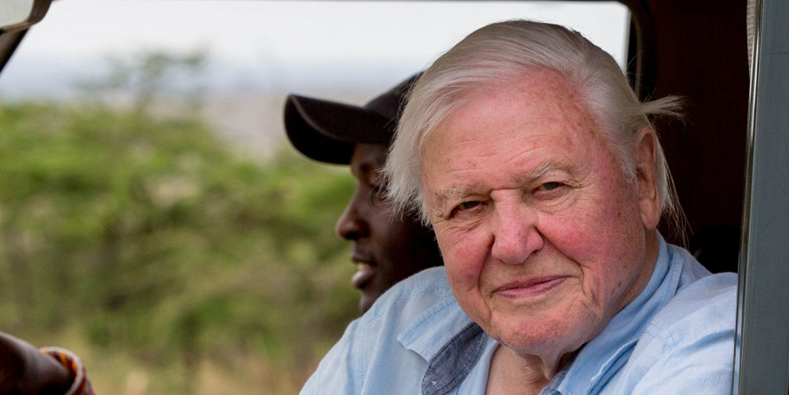 David Attenborough: A Life on Our Planet (9+)